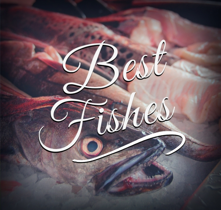 best-fishes